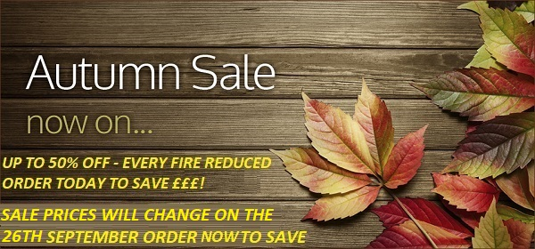 Wall mounted electric fire autumn sale
