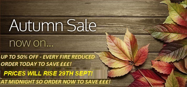 Autumn TruFlame Wall Mounted Electric Fire Sale